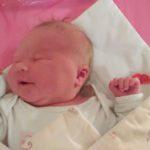 Śpioch, czyli senny noworodek